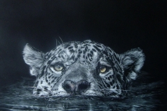 Lesley Barrett - Crossing the Pantanal