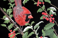 Martiena Richter - Cardinal and Holly